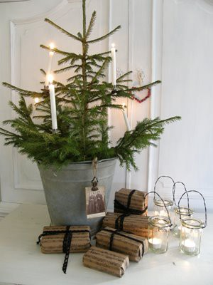 alternative_christmas_tree_potted